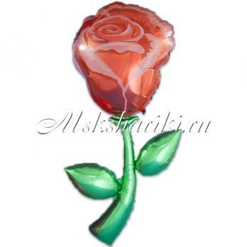 "Шар (60''/152 см фольга ) ""Фигура, Роза"""