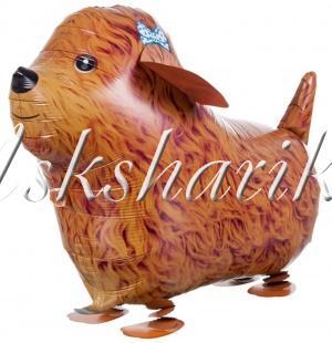 Воздушный шар (24''/61 см) Ходячая Фигура, Щенок
